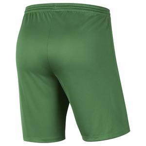 Dry Park III Erkek Yeşil Futbol Şort BV6855-302