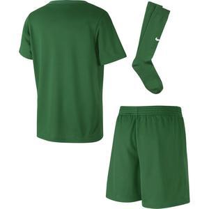 Dry Park20 Kit Set K Çocuk Yeşil Futbol Forma Takımı CD2244-302