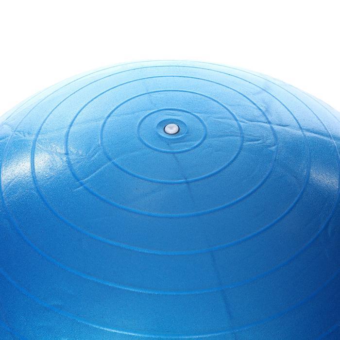 Spt Kadın Mavi 65cm Pilates Topu SPT-2902V-MAV 1189556